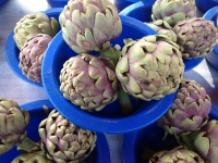 Fresh artichokes at the market in Macon