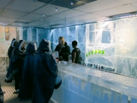 Bellying up at the ICEBAR Stockholm