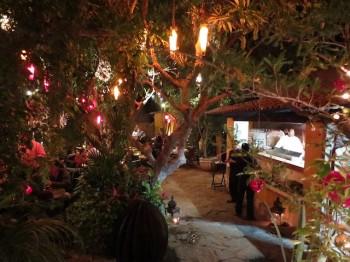 Tequila Restaurant in San Jose del Cabo