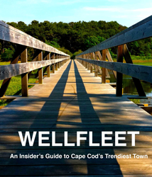Wellfleet: Cape Cod's trendiest town