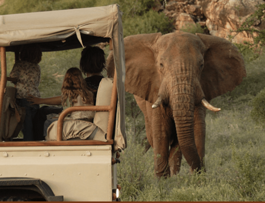 Africa with Jane Goodall