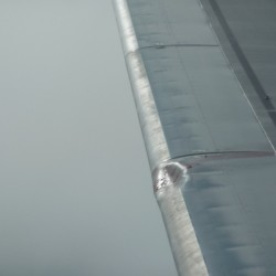 Our in-flight bird strike over Vancouver