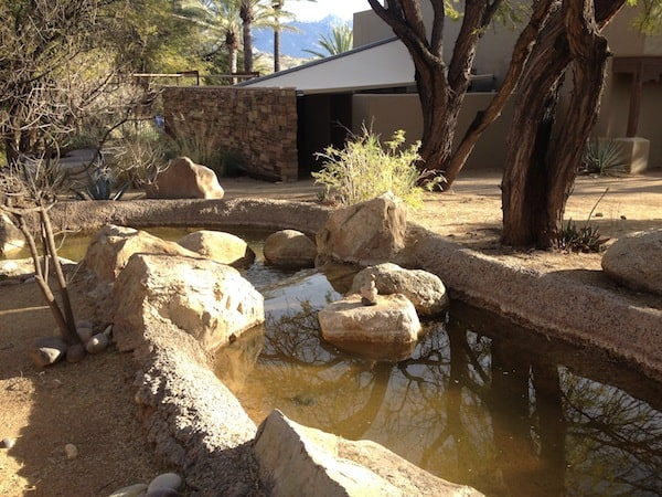 A tranquil fountain on the property (Photo credit: Sheryl Kraft)