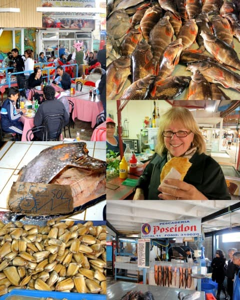 Scenes from the Coquimbo Fish Market