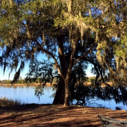 Drayton Hall: South Carolina plantation offers an unretouched look back