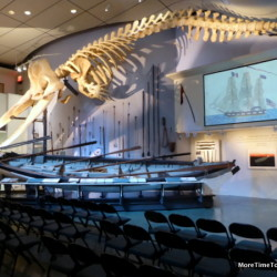 Nantucket Whaling Museum gears up for Hollywood thriller