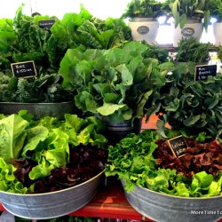 Flora Farm: Organic farm-to-table in San Jose del Cabo