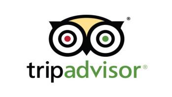 Tripadvisor-Logo-nw1