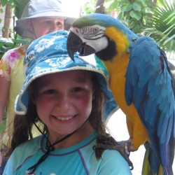 Family-friendly Dreams Riviera Cancun: Through the eyes of grandchildren