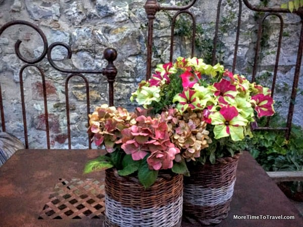 Potted flowers in San Gusme