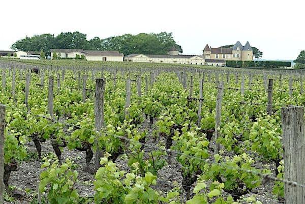 Vineyards of Bordeaux
