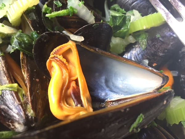 Yes, the mussels were this big and this orange (Photo credit: Jerome Levine)