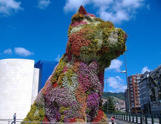 The Puppy Bilbao