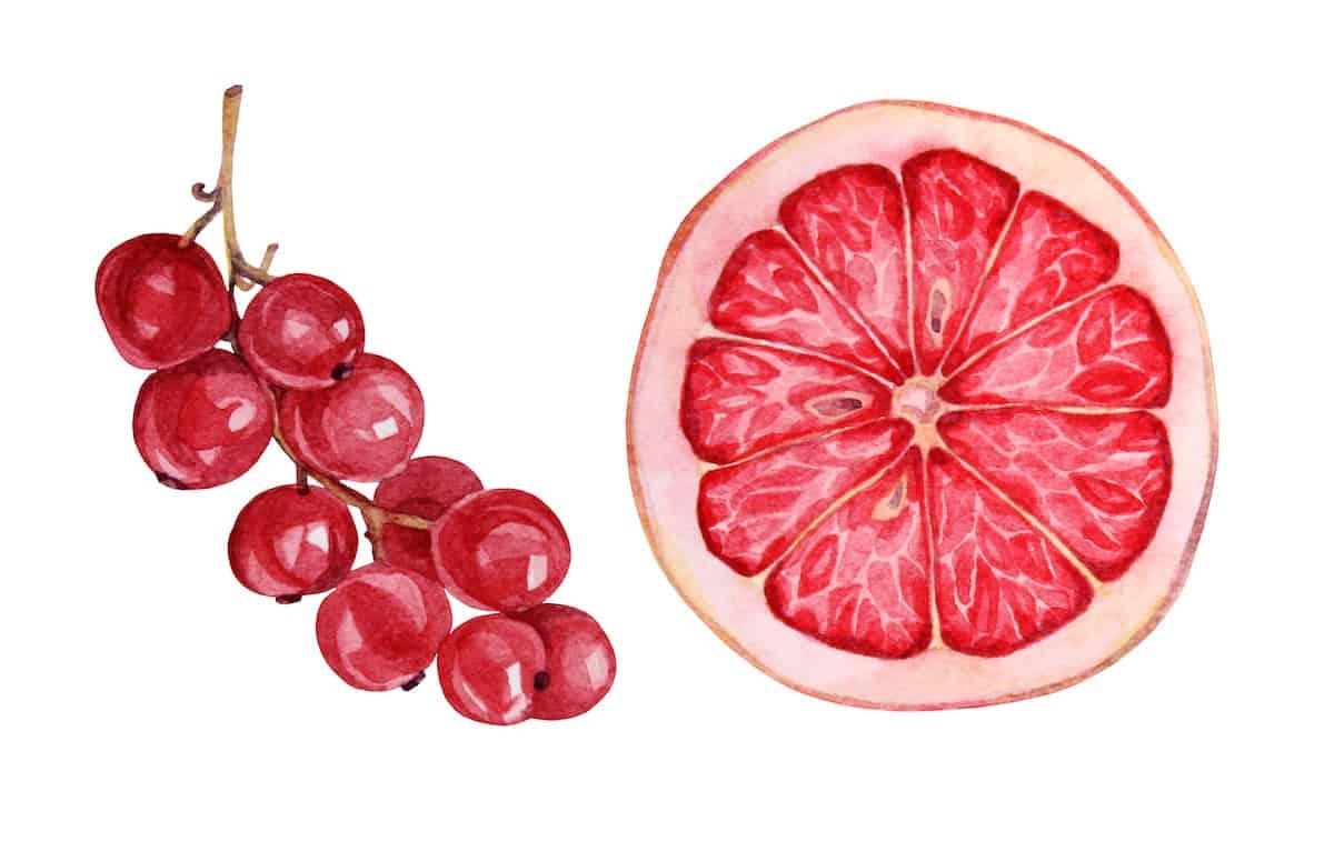 Pink grapefruit wine marries rose wine with grapefruit
